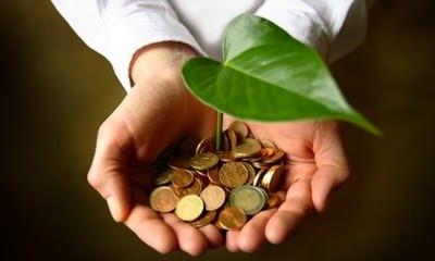 massimiliano scarabeo green economy molise